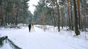Pares jovenes que caminan en el bosque del invierno que lleva a cabo las manos y que las abraza en la cámara lenta almacen de metraje de vídeo