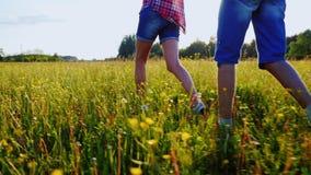 Pares jovenes que caminan a lo largo de un prado en la puesta del sol, llevando a cabo las manos El marco muestra solamente las p metrajes