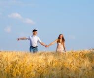 Pares jovenes que caminan a través de campo de trigo Fotos de archivo libres de regalías