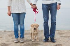Pares jovenes que corren a lo largo de la playa con su perro fotos de archivo