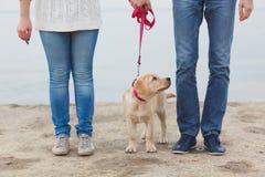 Pares jovenes que corren a lo largo de la playa con su perro foto de archivo libre de regalías