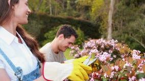 Pares jovenes que cortan sus flores almacen de metraje de vídeo