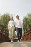 Pares jovenes que llevan a cabo las manos y que cruzan un puente Foto de archivo