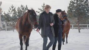 Pares jovenes que llevan dos caballos marrones que hablan en el rancho del invierno de la nieve Pares positivos felices pasar tie metrajes