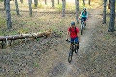 Pares jovenes que montan las bicis de montaña en el pino Forest Adventure y el concepto del viaje de la familia Foto de archivo libre de regalías
