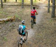 Pares jovenes que montan las bicis de montaña en el pino Forest Adventure y el concepto del viaje de la familia Imagen de archivo