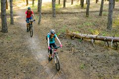 Pares jovenes que montan las bicis de montaña en el pino Forest Adventure y el concepto del viaje de la familia Imagenes de archivo
