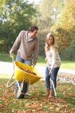Pares jovenes que rastrillan las hojas de otoño Fotos de archivo libres de regalías