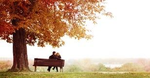 Pares jovenes que se besan en un banco debajo de la castaña enorme Imagen de archivo