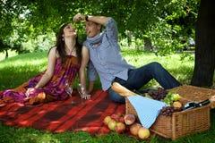 Pares jovenes que se sientan en la manta de la comida campestre mientras que alimentación del novio Imagenes de archivo