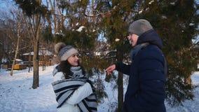 Pares jovenes que sonríen y que hablan el uno al otro en parque del invierno almacen de video