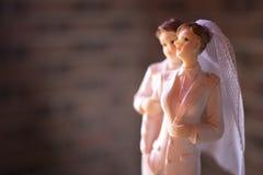 Pares lesbianos de la boda del primero de la torta imágenes de archivo libres de regalías