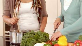 Pares lesbianos que cocinan junto almacen de video