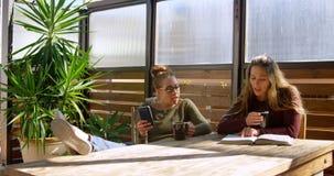 Pares lesbianos que discuten sobre un libro mientras que comiendo el café 4k metrajes