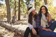 Pares lesbianos que se sientan en un bosque, mirando uno a fotografía de archivo
