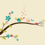 Pares lindos del pájaro del amor para la celebración del día de tarjeta del día de San Valentín ilustración del vector