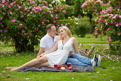 Pares lindos que beben el vino rojo en una comida campestre que sonríe en uno a en un día soleado Foto de archivo