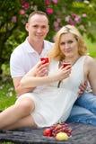 Pares lindos que beben el vino rojo en una comida campestre que sonríe en uno a en un día soleado Imagen de archivo libre de regalías