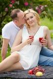 Pares lindos que beben el vino rojo en una comida campestre que sonríe en uno a en un día soleado Imagen de archivo