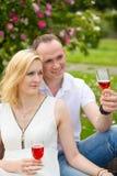 Pares lindos que beben el vino rojo en una comida campestre que sonríe en uno a en un día soleado Fotografía de archivo libre de regalías