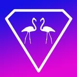 Pares Logo Banner Image del flamenco del pájaro en fondo púrpura azul de la pendiente ilustración del vector