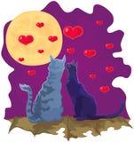 Pares loving dos gatos do Valentim no luar Foto de Stock