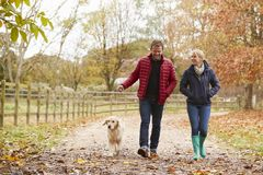 Pares maduros en Autumn Walk With Labrador fotos de archivo