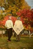 Pares maduros en el parque del otoño Foto de archivo libre de regalías