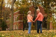 Pares maduros no parque do outono Imagem de Stock Royalty Free