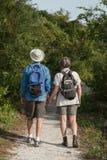Pares maduros que llevan a cabo las manos y que caminan en la naturaleza t Imagen de archivo