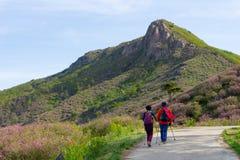 Pares mais velhos que caminham na maneira do montanhês no país P de Hwangmaesan imagem de stock royalty free