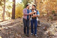 Pares masculinos gay con el bebé que camina a través de arbolado de la caída Fotos de archivo libres de regalías