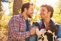 Pares masculinos gay con el bebé que camina a través de arbolado de la caída Fotografía de archivo