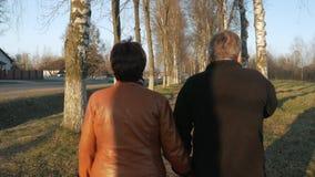 Pares mayores cariñosos que caminan en el parque en la puesta del sol Cerca hay un camino Una mujer en una chaqueta de cuero marr almacen de metraje de vídeo
