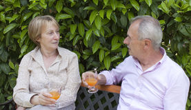 Pares mayores en el jardín Fotografía de archivo libre de regalías