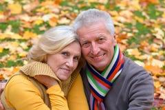 pares mayores en parque del otoño foto de archivo