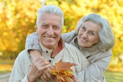 Pares mayores felices Imagen de archivo libre de regalías