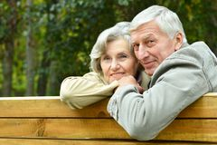 Pares mayores felices Foto de archivo libre de regalías
