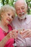 Pares mayores felices junto Fotos de archivo