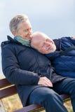 Pares mayores felices que se relajan junto en la sol Fotos de archivo libres de regalías