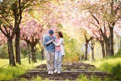 Pares mayores hermosos en amor afuera en naturaleza de la primavera fotografía de archivo