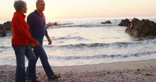 Pares mayores que caminan de común acuerdo en la playa 4k