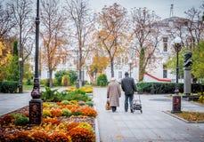 Pares mayores que caminan en parque del otoño imágenes de archivo libres de regalías