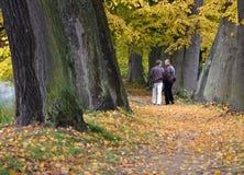 Pares mayores que caminan en ruta verde Foto de archivo
