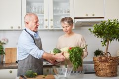 Pares mayores que cocinan junto Foto de archivo libre de regalías