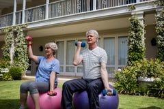 Pares mayores que ejercitan con pesas de gimnasia en bola de la aptitud Imagen de archivo libre de regalías