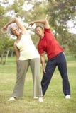 Pares mayores que ejercitan en parque Foto de archivo