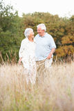 Pares mayores que recorren en parque Fotografía de archivo libre de regalías
