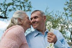 Pares mayores que se abrazan en campo foto de archivo