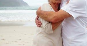Pares mayores que se abrazan en la playa y que miran fijamente en la distancia almacen de metraje de vídeo